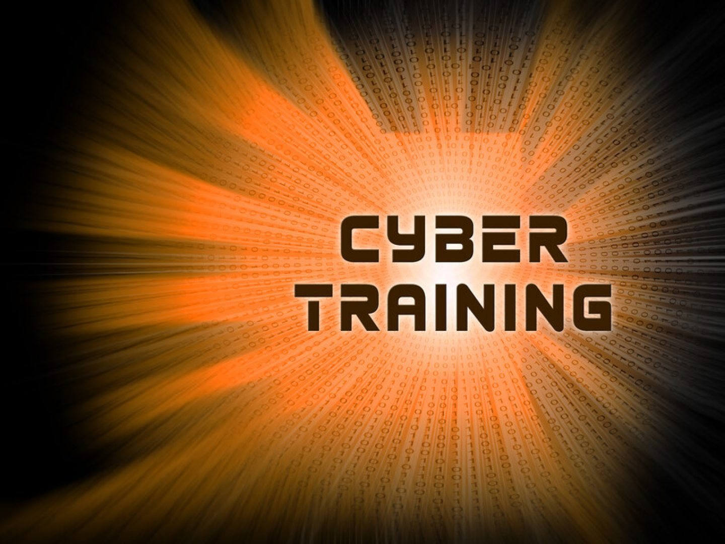 CyberPartners Training